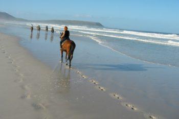 horse-riding-Noordhoek-Beach