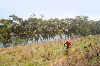 Contermanskloof is a privately built and managed MTB track.
