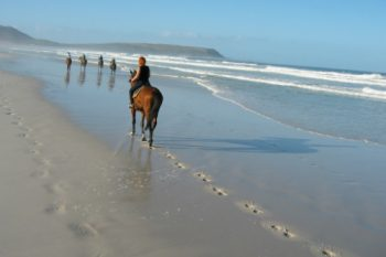 Horse Riding on the Beach is a peaceful experience.
