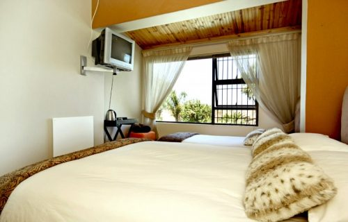 7 On Kloof - Guest House, Conference and Self Catering in Plattekloof - 9