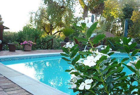 Cape Country Cottage Guest House - Guest House, Conference and Self Catering in Durbanville - 5