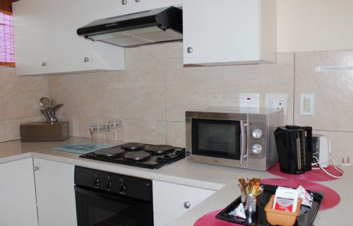 Smithland Guest Apartments - Self Catering in Parow - 4