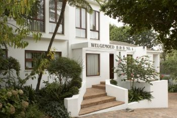 Welgemoed Manor - Guest House and Bed and Breakfast in Bellville - 20