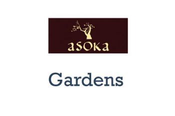 Asoka - Restaurant in Gardens