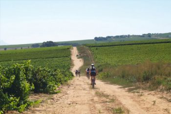 Bike n' Wines - Wine Tours in Cape Town