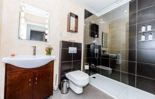 burgundy en-suite bathroom