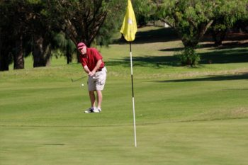 Durbanville Golf Club - Golf Courses in Cape Town