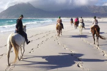 Imhoff Equestrian Centre - Horse Riding in Cape Town