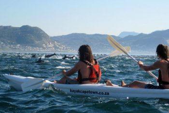 Kayak Cape Town - Activities in Cape Town