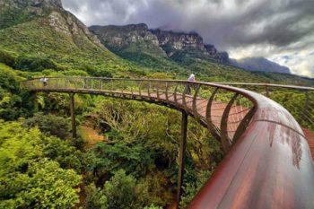 Kirstenbosch Botanical Gardens - Parks in Cape Town