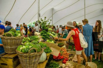 Oranjezicht City Farm Market - Markets in Cape Town