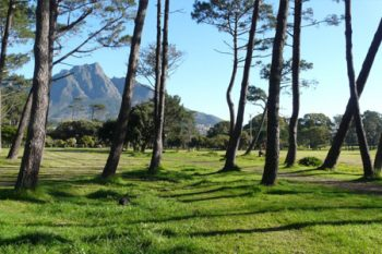 Rondebosch Park - Parks in Cape Town