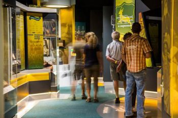 Springbok Experience Rugby Museum - Activities in Cape Town