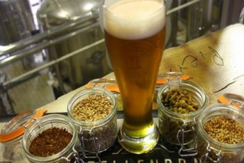 Stellenbrau Brewery - Beer Tours in Cape Town