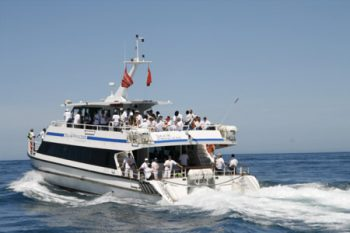 Waterfront Charters - Yacht Charters in Cape Town